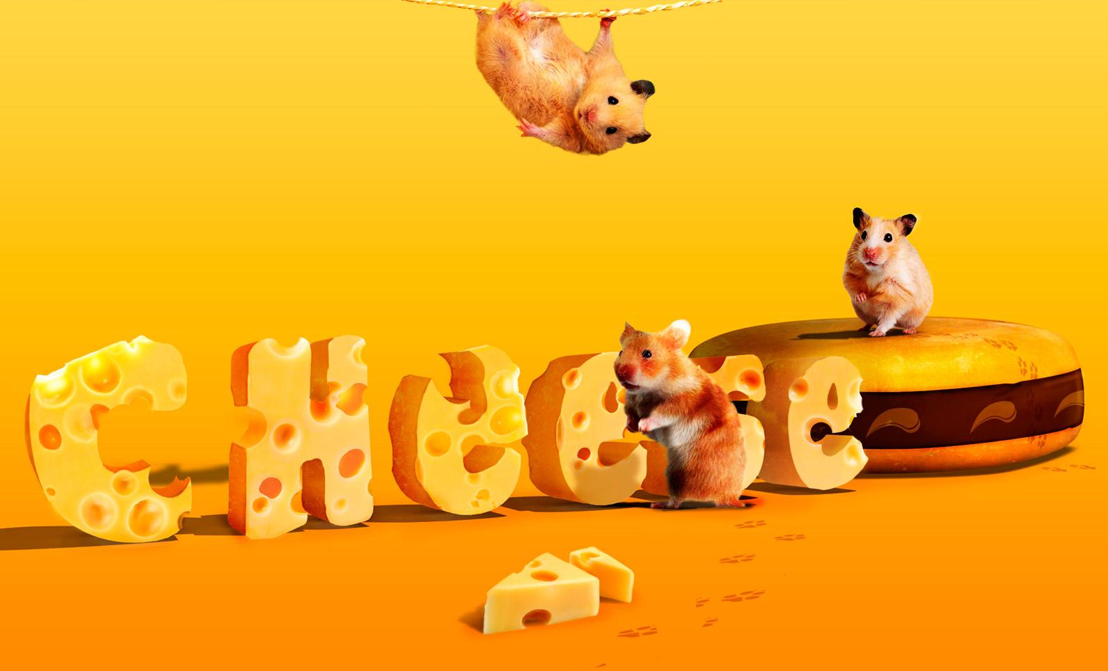 Tipografía con queso