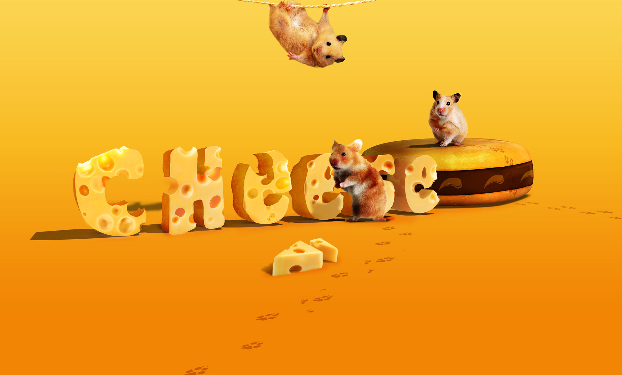 Typography with cheese