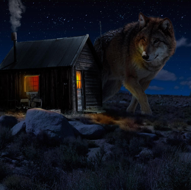 Matte painting Wolf